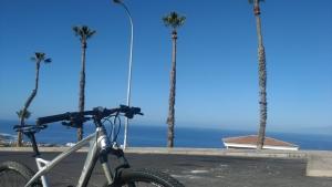 TF bici MTB